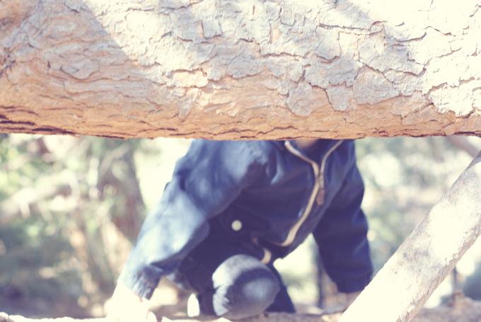 Q_TREE2