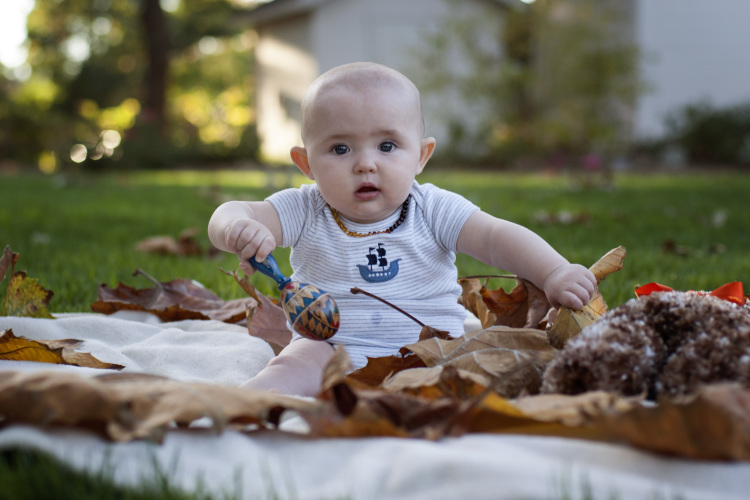 Jasper 6 months | Westover Manor Photography